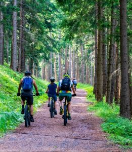 Nützliche Tipps zum Mountainbiken