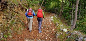 Wanderkurs für Senioren