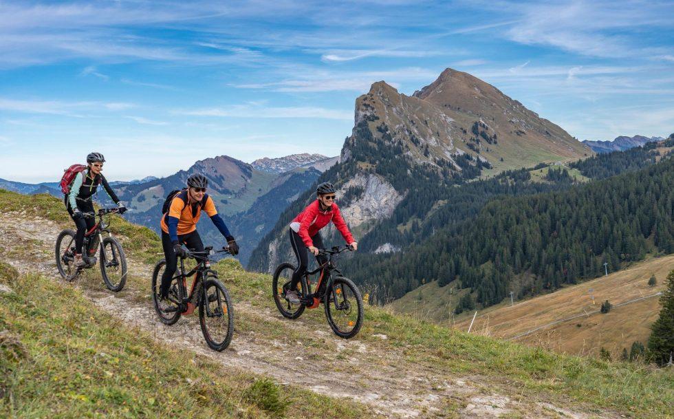 Mountainbike_mittel